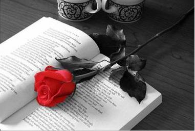 rosa_y_libro