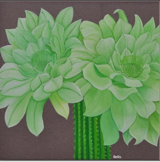 Flor del Cactus blog