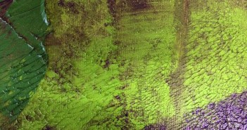 """""""Garden"""", de Paulo Nascimento"""