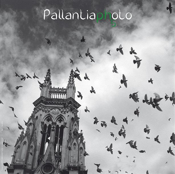 Pallantia Photo