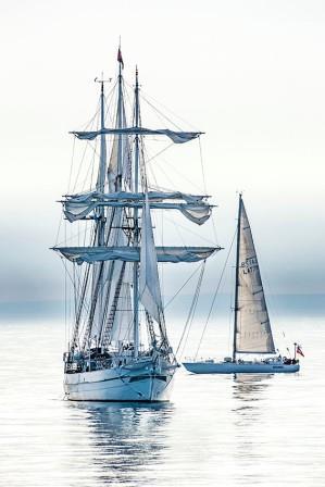 Aristócratas de los mares