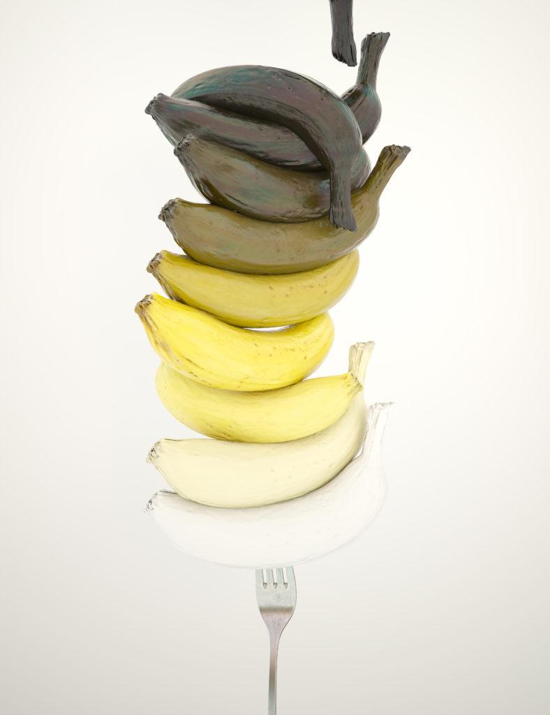 """""""La evolución, hablemos de bananas"""", de Carlos Vielba"""
